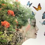 Metamorfoza Tygla Artystycznego - sklep i blog handmade